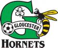 Gloucester Hornets Logo